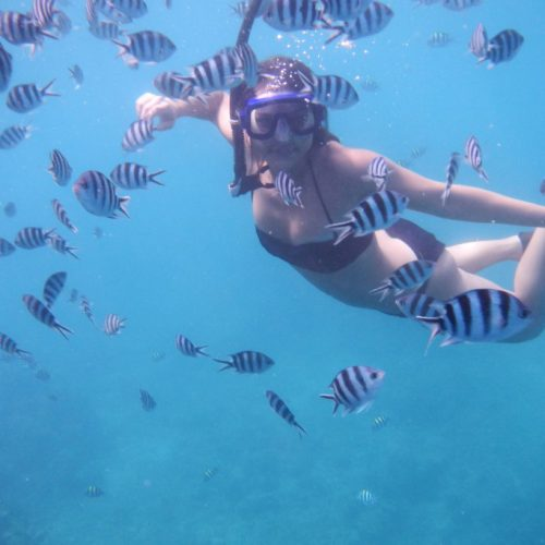 Snorkelling with fish near Daku Resort, Savusavu.