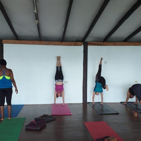 Yoga retreat Nicci McGrath Handstands